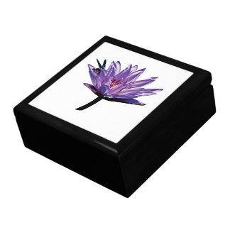 Slända på purpurfärgad näckros presentskrin