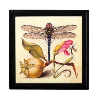 Slända, Pear, nejlika och insekt Presentskrin