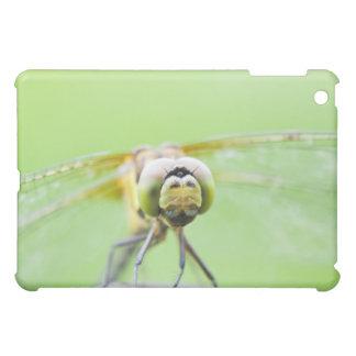 Slända (Sympetrum infuscatum) iPad Mini Mobil Skydd