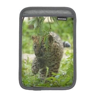 Sleeve för iPad för Amur Leopardunge mini-