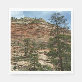 Slitna stenväggar i den Zion nationalparken Pappersservetter