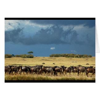 Slösa det MasaiMara Kenya för wildebeesten (GNU) Hälsningskort