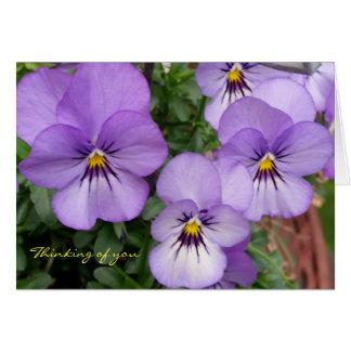 Slösa Pansies/Violets som är tänkande av dig Hälsningskort