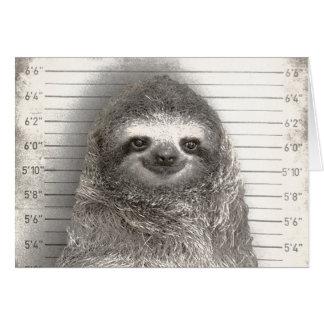 Sloth i en Mugshot Hälsningskort