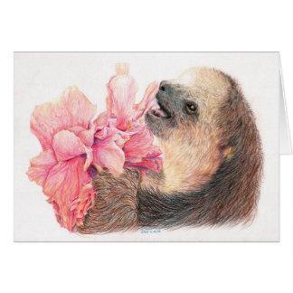Sloth som äter hibiskusblomman hälsningskort