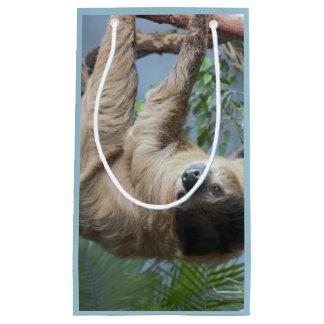 Slothfotogåvan hänger lös