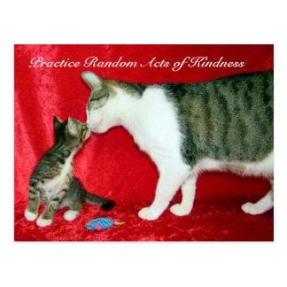 Slumpmässigt agerar av vänlighetvykort - är du min vykort