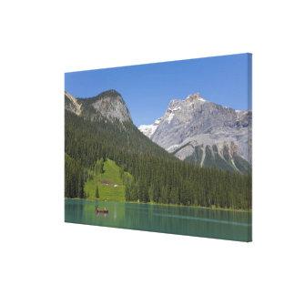Smaragd sjö, kanadensiska Rockies, britt Canvastryck