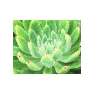 Smaragdgrönt Canvastryck