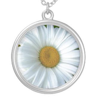 Smycken & gåvor för daisy för daisyhalsband