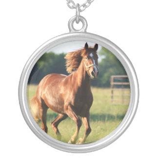Snabbt växande kastanjebrunt hästhalsband halsband med rund hängsmycke
