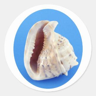 Snäcka av en Conch på blått Runt Klistermärke
