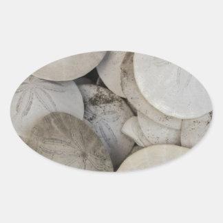 Snäcka för hav för Sanddollar Ovalt Klistermärke