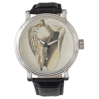Snäcka för vintageSepiaConch Armbandsur