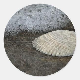 Snäcka- & havskonstverk runt klistermärke