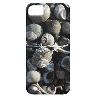 Snäckor iPhone 5 Case-Mate Fodraler