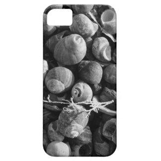 Snäckor iPhone 5 Skydd