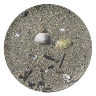Snäckor på sanden. Sommarstrandbakgrund Tallrik
