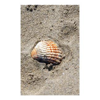 snäckor på stranden brevpapper