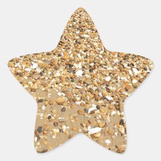 Snäckor Stjärnformat Klistermärke