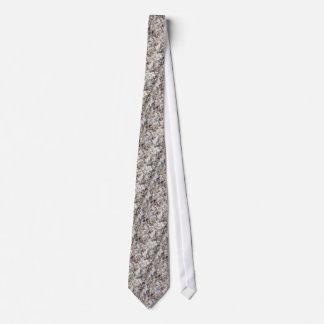 Snäckor vid havskusten slips