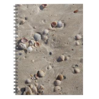 Snäckskal i den våta sanden anteckningsbok med spiral