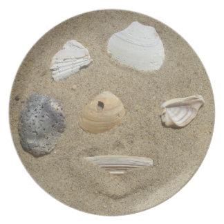Snäckskal i sanden tallrik