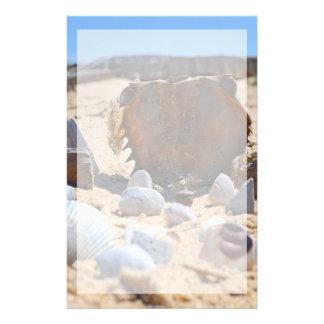 Snäckskal på stranden av Shirley Taylor Brevpapper