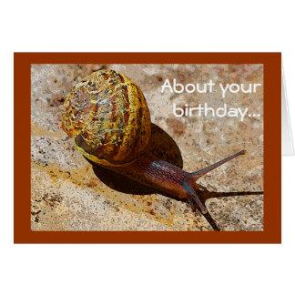 Snigeln postar försenad födelsedag hälsningskort