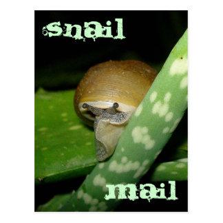 Snigeln postar vykortet vykort
