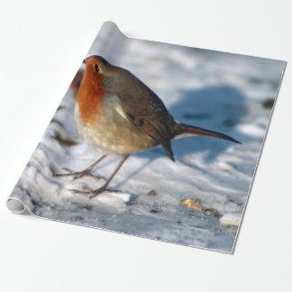 Snö och röd Robin jul Presentpapper