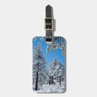 Snö-täckte träd i de Laguna bergen Bagagebricka