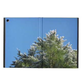 Snö-tippat grästräd på blå himmel iPad air fodral