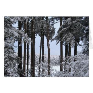 Snöig gräs i blått tänder hälsningskort
