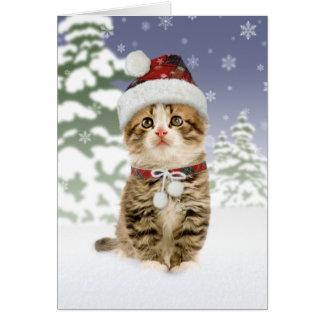 Snöig kattungejulkort hälsningskort