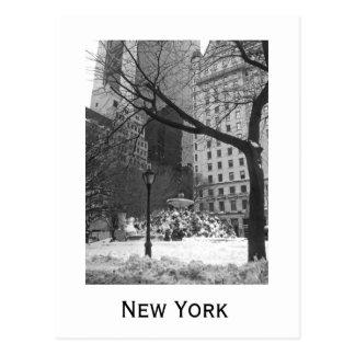 Snöig parkera i New York Vykort