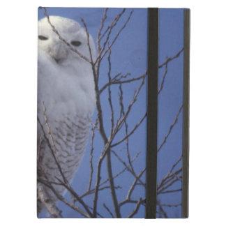 Snöig uggla, vitfågel mot en safirblå himmel fodral för iPad air