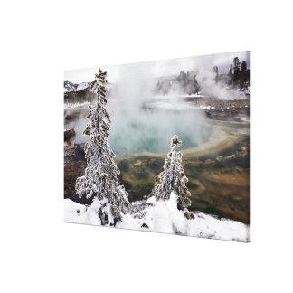 Snöig Yellowstone Canvastryck