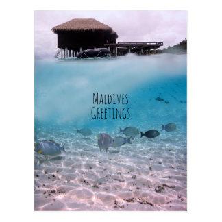 Snorkeling rolig souvenir för Maldiverna Vykort