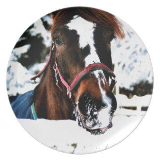 Snöskönhet Tallrik