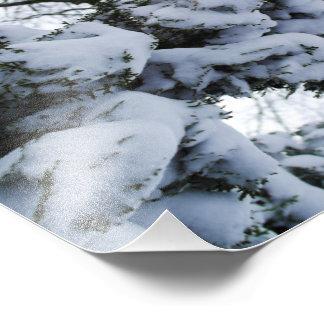 Snöträd Fototryck