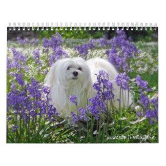 Snowdrop den maltesiska kalendern kalender