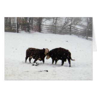 Snowing för två kostunder hälsningskort