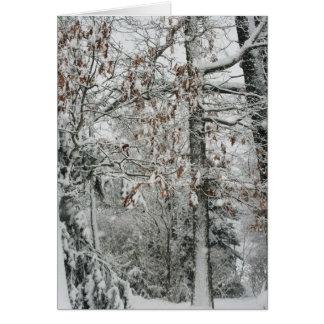 snowing i landet hälsningskort