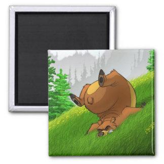 Snubbla björnmagneten kylskåpsnagnet