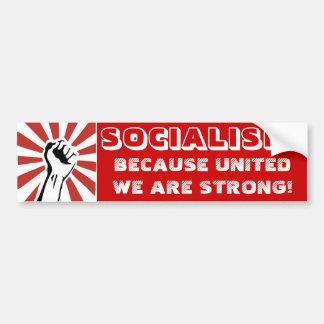 SOCIALISM! Därför att enigt vi är starka! Bildekal