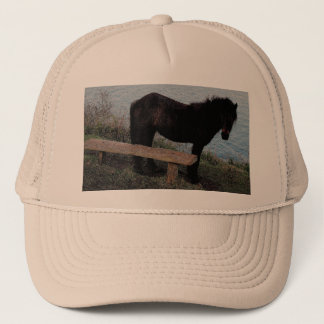 Södra Devon Dartmoor ponny nära Bench.3. Truckerkeps