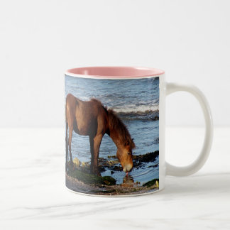 Södra Devon Dartmoor ponny som slickar havsvatten Två-Tonad Mugg