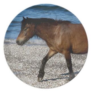 Södra Devon Dartmor ponny som går på strand Tallrik