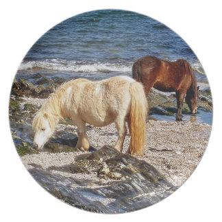 Södra Devon två ponnyer i stenar på avlägsen Tallrik
